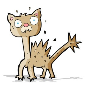 cartoon scared cat (c) Bigstockphoto